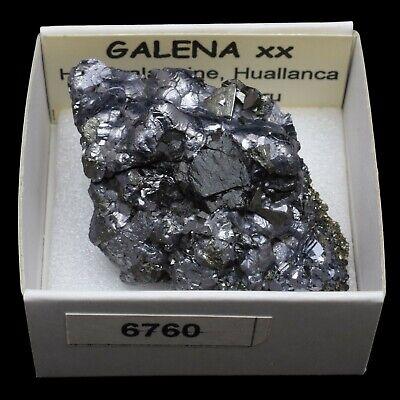 GALENA cristalizada (Huanzala mine, Bolognesi, Peru) #6760