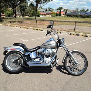 Softail Muswellbrook Muswellbrook Area Preview