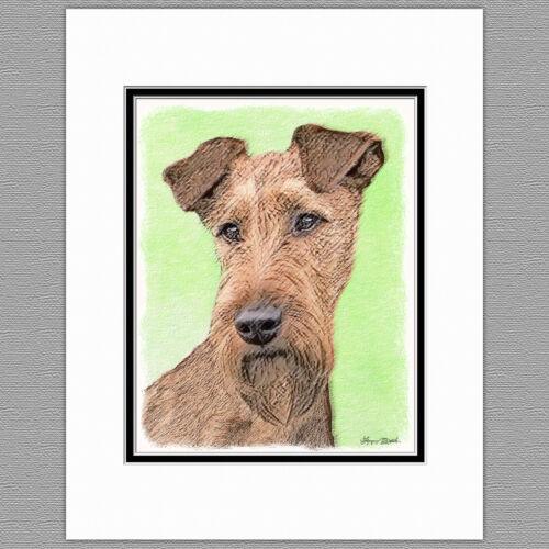 Irish Terrier Dog Original Art Print 8x10 Matted to 11x14