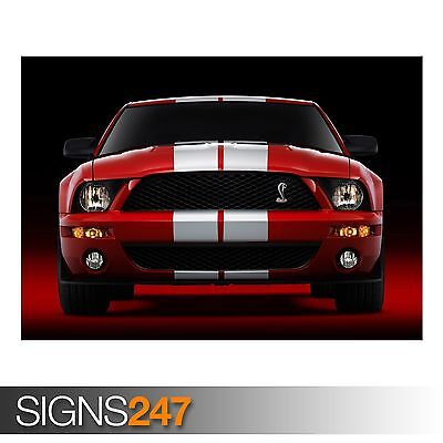 (2007 FORD SHELBY GT500 (AC890) CAR POSTER - Photo Poster Print Art * All Sizes)