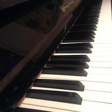 Learn to Play Piano with Professional Teacher Church Point Pittwater Area Preview