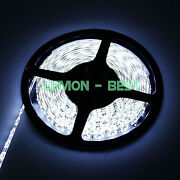 5M LED Strip 3528 White