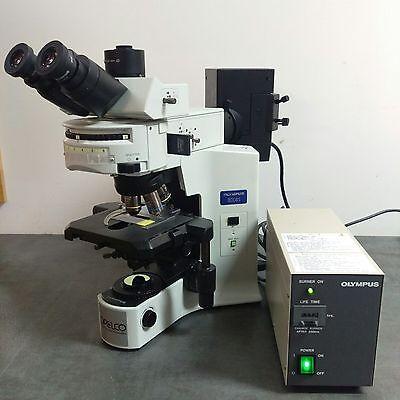 Olympus Microscope Bx41 Fluorescence