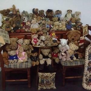 Teddy bear collection Croydon Park Canterbury Area Preview