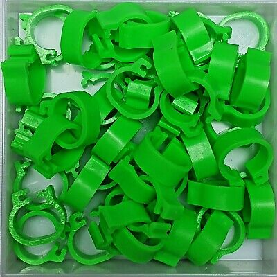 25 x GREEN 8mm PLASTIC PIGEON LEG CLIP CLICK RINGS