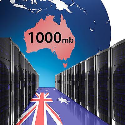 1000mb Hosting on Australia Servers x 2 Years - Domain name website using cPanel