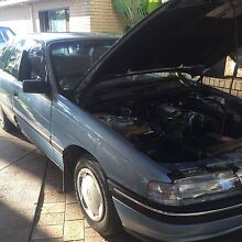 VN COMMODORE MINT CONDITION MUST SEE !! Walliston Kalamunda Area Preview