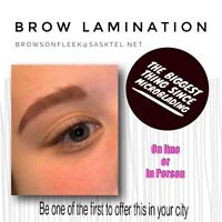 Education- eyebrow lamination - hottest trend since microblading