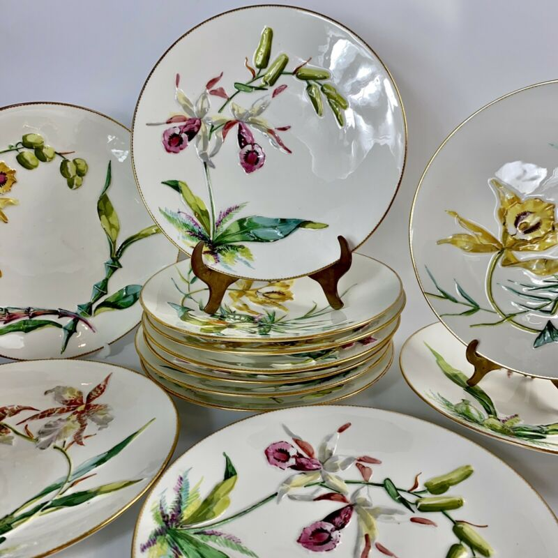Set of Rare 12 Bodley Orchid Dinner Plates-Raised Hand Painted Flowers - C19th