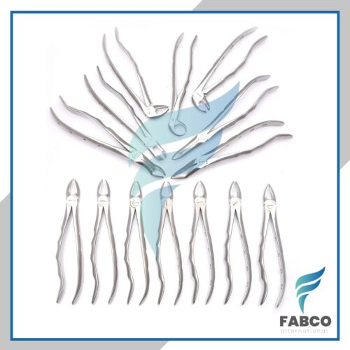 German Stainless Extracting Forceps Extraction Dental Instruments Set Of 14