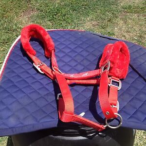 SADDLE + Assorted gear Londonderry Penrith Area Preview