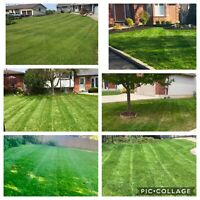 Lawn Maintenance/Haldimand/Norfolk