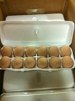 Ceramic Chicken Nest Egg Brown Home Decor Listing Is For 1 Egg