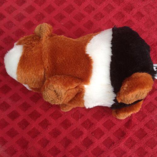 Tri-Colored Plush Guinea Pig