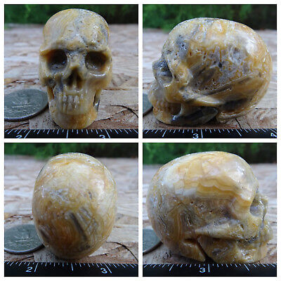 """2.0"""" Crazy Lace Agate Skull Carved Stone 3.3oz 93.2g Crystal Healing Realistic"""
