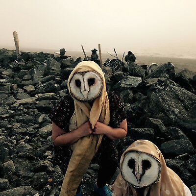 Barn Owl Mask - Creepy Adult Halloween Mask - Owl Mask