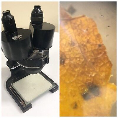 Spencerao Vintage Stereo Microscope Small Wclean Optics Dual Objective Lens