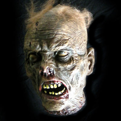 """Lifesize Rotting Cut Off Zombie Head Haloween Party Haunted House Prop 10"""""""