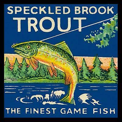 Speckled Brook Trout Fridge Magnet