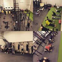 GYM/COURS EN GROUPE/CIRCUIT