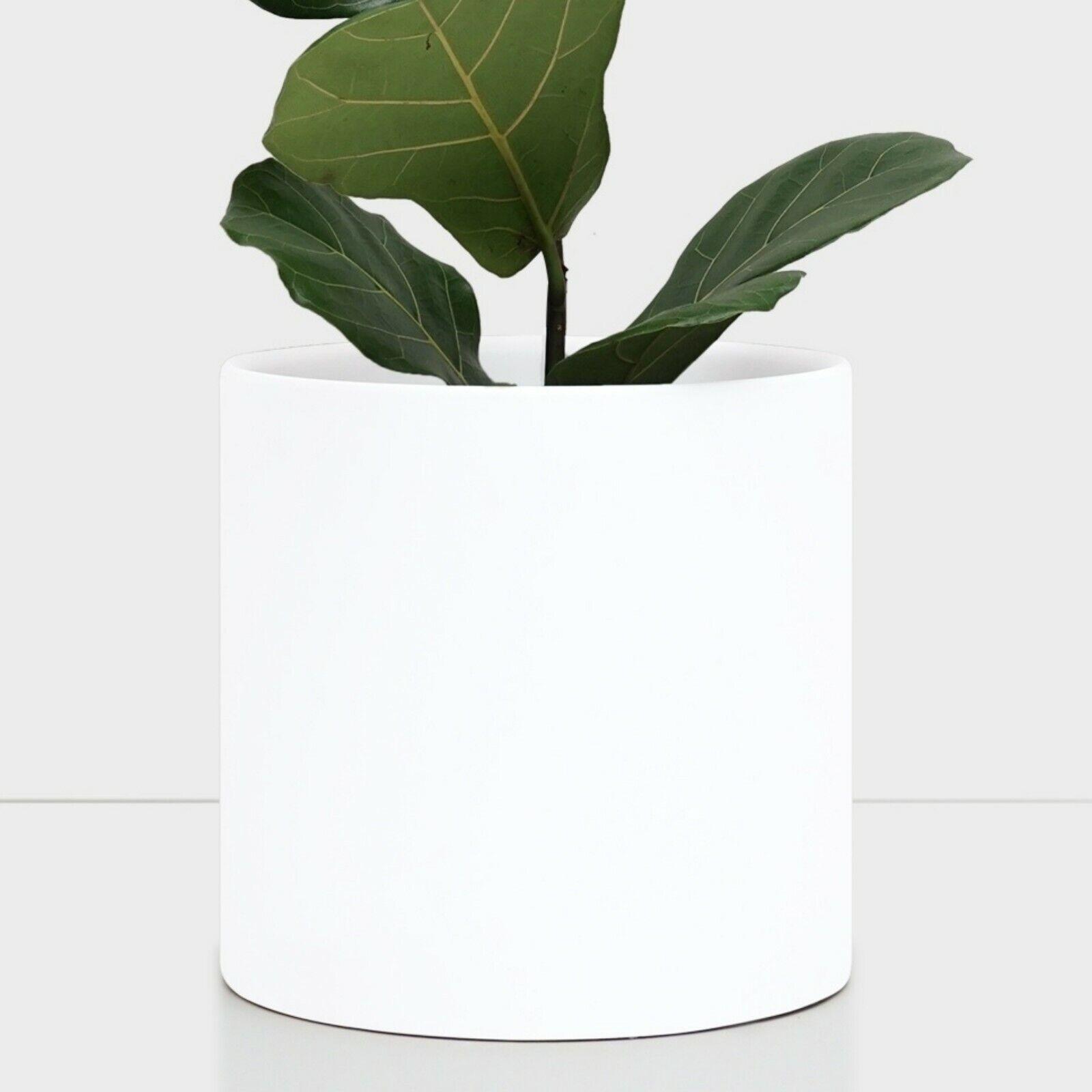 White Ceramic Plant Pot - Modern Indoor Flower Pot