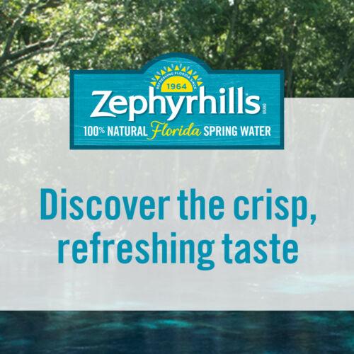 ZEPHYRHILLS Brand 100% Natural Spring Water, 33.8-ounce plastic bottles (Pack of