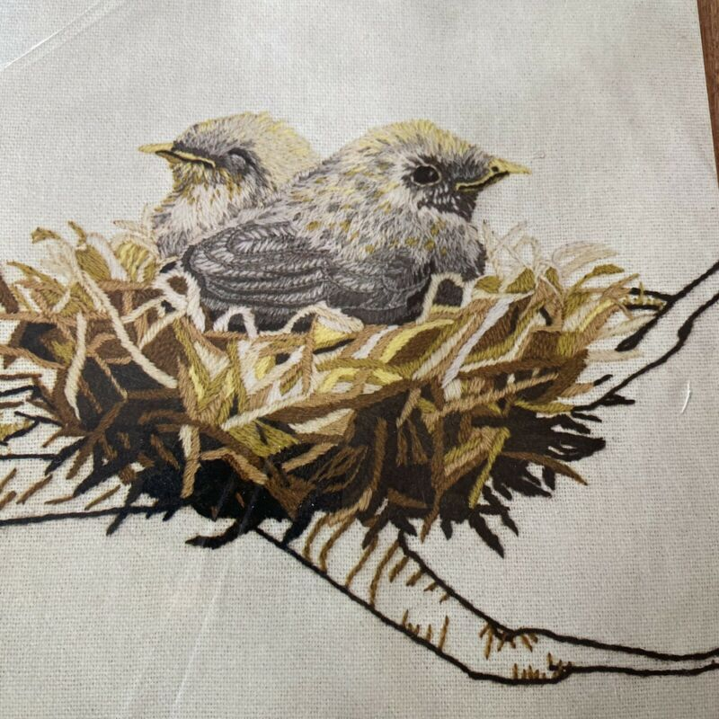 Dimensions Crewel Embroidery Kit 1029 Birds In Nest Birding Nature Vtg