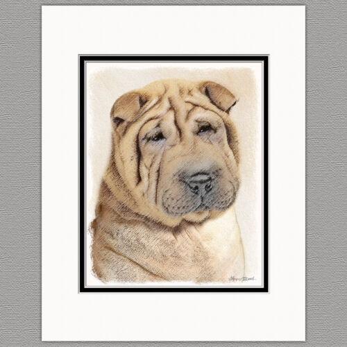Shar Pei Dog Original Art Print 8x10 Matted to 11x14
