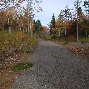 40 acres for sale 4K from tatamagouche