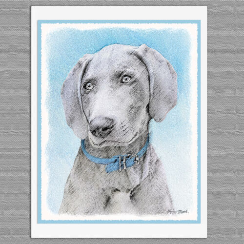 6 Weimaraner Blank Art Note Greeting Cards