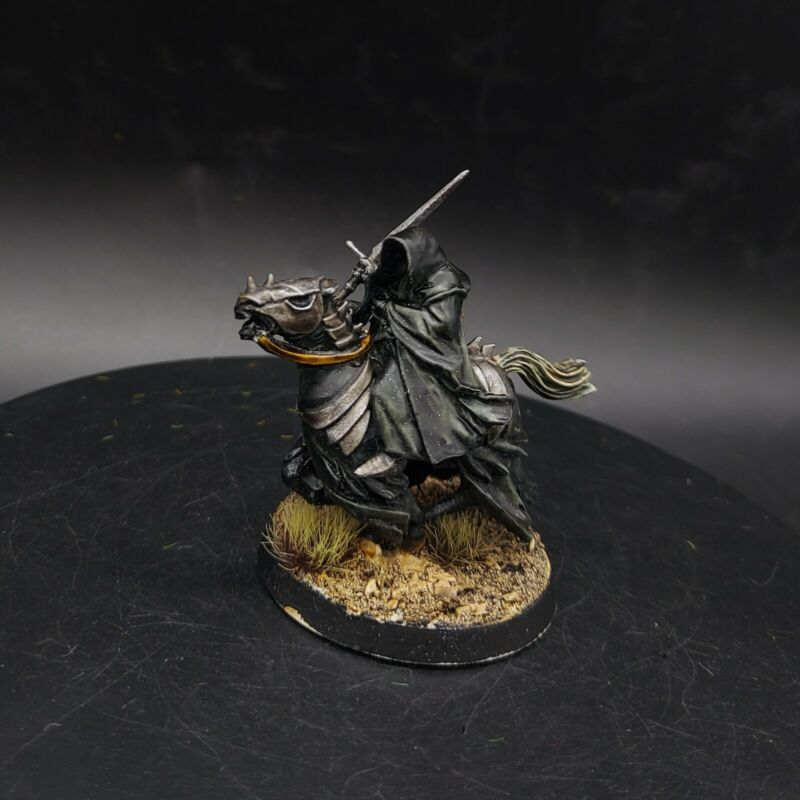Pro painted Warhammer LOTR mounted ring wraith conversion PLASTIC