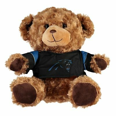 NFL Carolina Panthers 10
