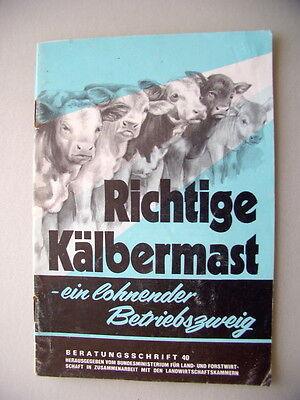 Richtige Kälbermast 1. Auflage 1980 ein lohnender Betriebszweig Kalb Mast