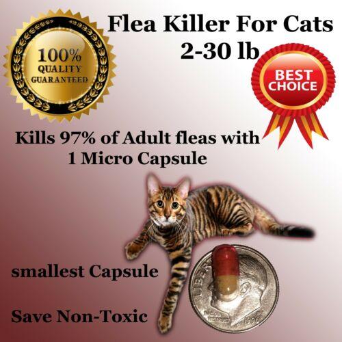 50 Instant Flea Killer Control small Cats 2-30lb prevention MICRO PILL NEW 15mg