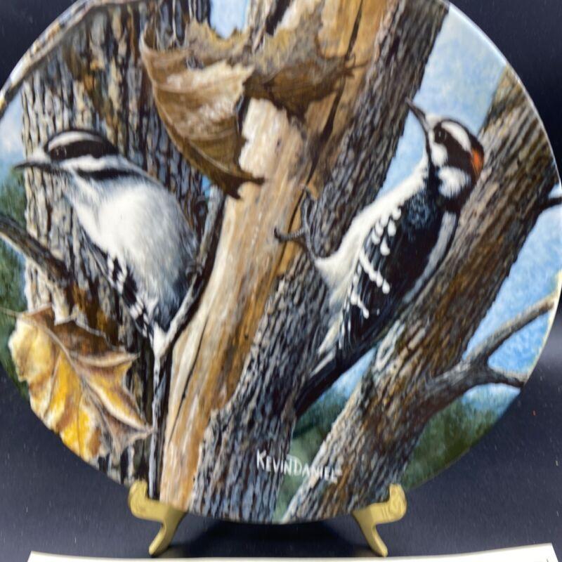Nice 1987 Edwin M Knowles The Downy Woodpecker Birds Plate Kevin Daniel 9631D
