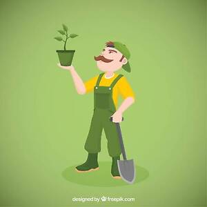 Greg's Gardening and Handyman Services Adelaide Region Preview