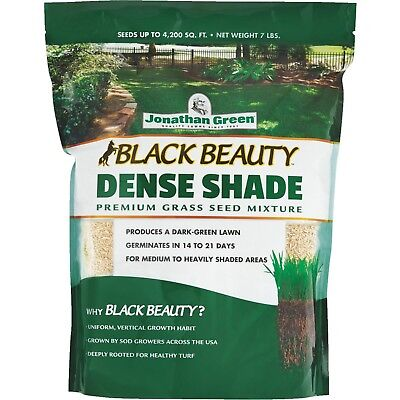 Grass Seed Mixture Dense Shade for Shady Areas Germinates in 14 to 21