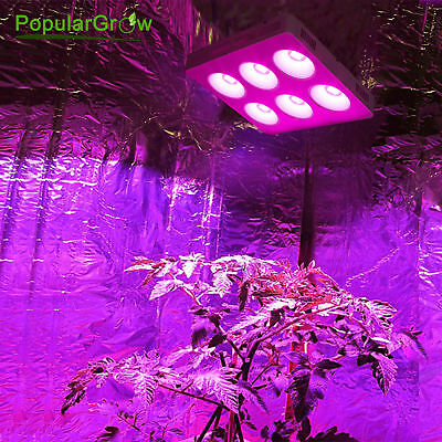 PopularGrow COB 1200W LED Grow Light Indoor Hydro Lamp Commercial Crop Harvest