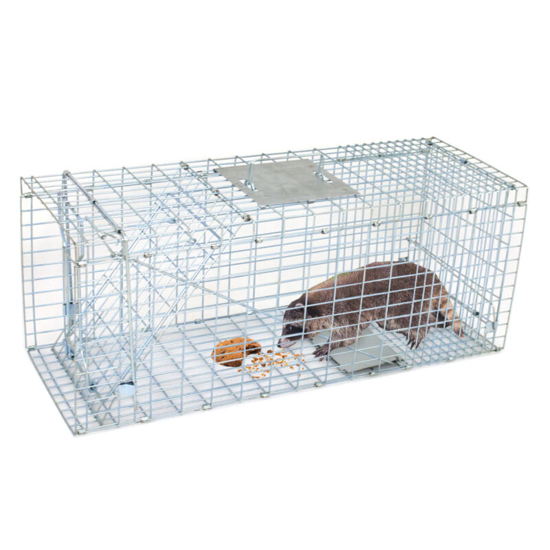 "Humane Small Live Animal Control Steel Trap Cage 32""x12.5""x12"" Raccoon Skunk Cat"