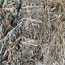 Hay for Sale Moggill Brisbane North West Preview