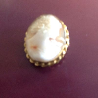 Gold Filled Cameo Pin And Pendant