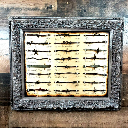 Antique Barbed Wire Display 24 cuts Authentic Barbwire Collection Framed