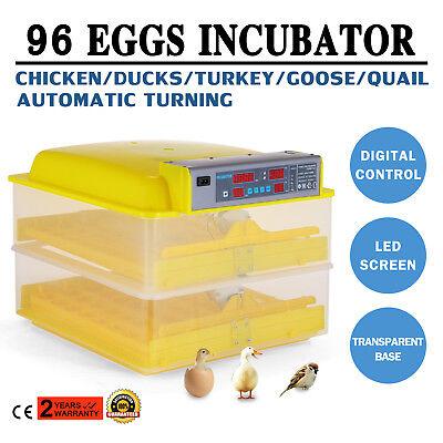 Digital Brutmaschine 96 Eier Brutapparat Flächenbrüter Inkubator AUTO Geflügel