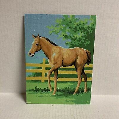 Vintage Chestnut Foal Paint By Numbers 70s