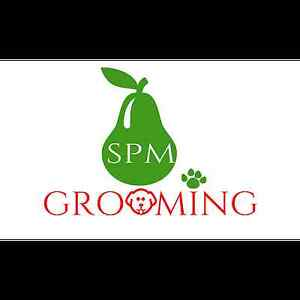 SPM Grooming Scarborough Stirling Area Preview