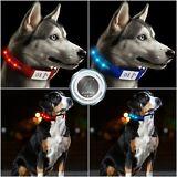 Premium Quality S M L Nylon LED Flash Glow USB Rechargeable Dog Puppy Collar