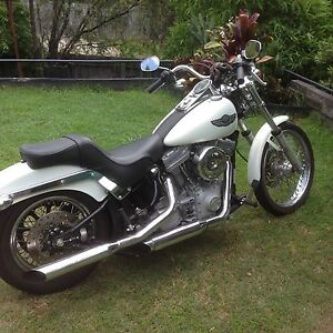 100 Year Anniversary SOFTAIL- Suit new buyer-One Careful Owner Nerang Gold Coast West Preview