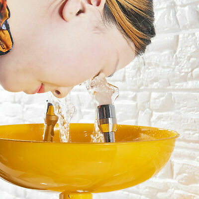 Wall Mounted Professional Emergency Eye Wash Station Eye Wash Bowl Washer