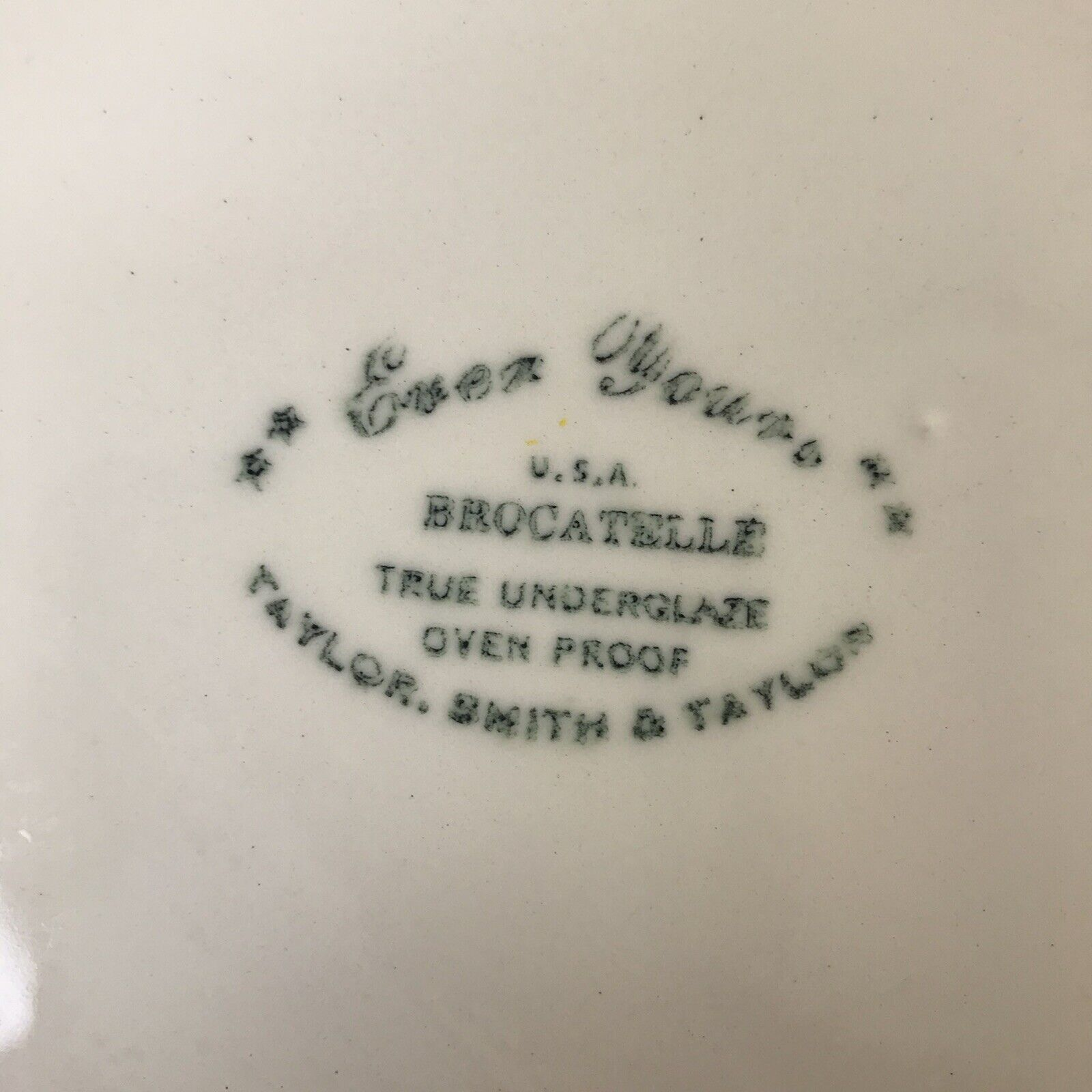 Taylor Smith Ever Yours Brocatelle Dinner Plate Fruit Floral Farmhuse Country - $7.20