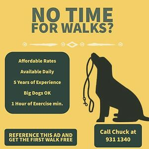 Dog Care/Walking